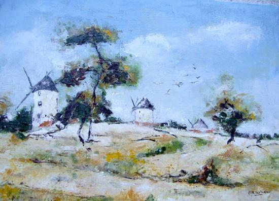 dune à Noirmoutier 46x33